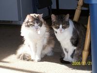 Jessica and Maxine in the sun